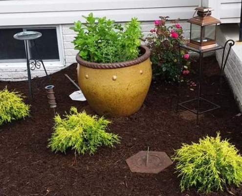 Mulching Services in Annapolis MD