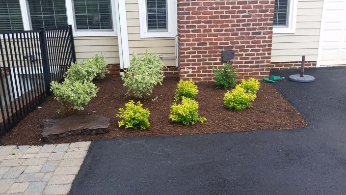 Lawn Care Services in Annapolis