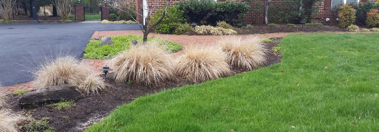 Lawn Mowing Services in Annapolis